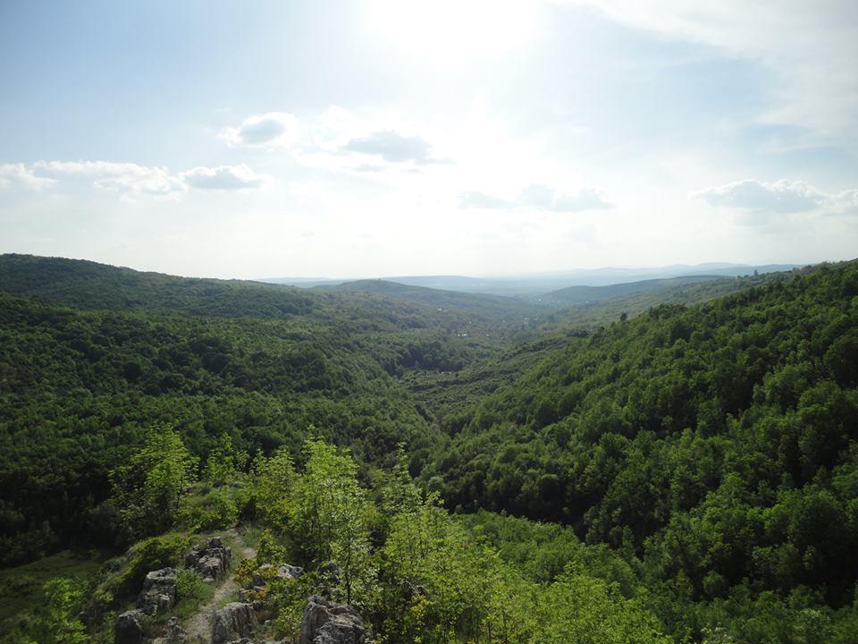 Panoramă asupra satului Dobrota. Pe misloc se poate observa valea pe unde curge Sărătica ,marginită de dealuri iar la orizont la aproximativ 3 km distantă este punctul unde şi-a aseşat Mihai Viteazul tabăra.
